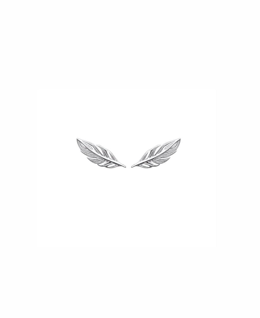 plumes contours