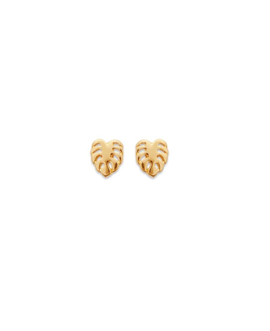 Boucles d'Oreilles Monstera